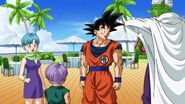 Dragon Ball Super Screenshot 0622