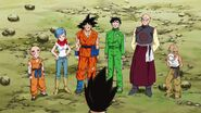 Dragonball Season 2 0084 (255)