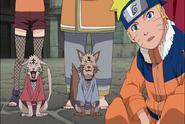 Naruto-s189-120 38437121140 o
