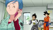 Dragonball Season 2 0084 (273)