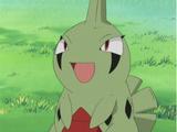 Ash's Larvitar