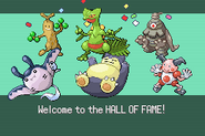 Pokemonemerald11 (39)