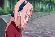 Naruto Shippudden 181 (30671413)
