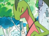 Grovyle (Mystery Dungeon)