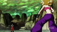 Dragon Ball Super Episode 113 0414