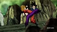 Dragon Ball Super Episode 113 0483