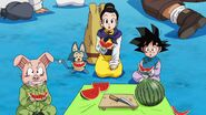 Dragonball Super Tournament (11)