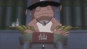 300px-The Great Toad Sage