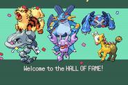 Pokemonemerald11 (33)