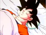 Future Goku Son