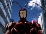 Awakened Cockroach