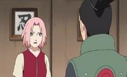 Naruto15312145