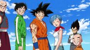 Dragonball Season 2 0084 (259)