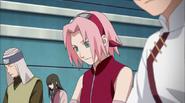 Sakuraandtenten03589 (34)