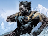 Logan (Wolverine) (Earth-1610)