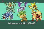 Pokemonemerald11 (3)