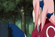 Naruto Shippudden 181 (283)