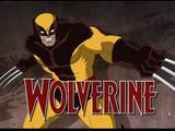 Logan (Wolverine) (Earth-TRN123)
