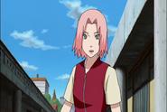 Sakura29929 (1)