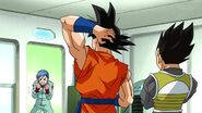 Dragonball Season 2 0084 (285)