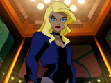 Dinah Lance(Black Canary)