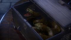 1x11 Agrabahn Viper
