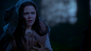 5x12 Snow White without heart