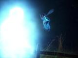 Magia wróżek