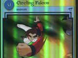 Circling Falcon