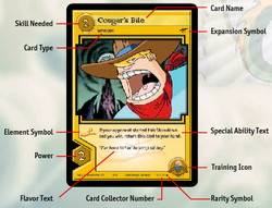 Parts of a Card
