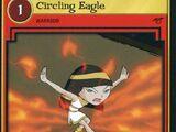 Circling Eagle