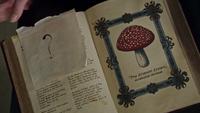 5x03 Merlin book