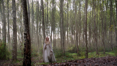 5x08 Caledonian Forest