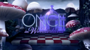 Wx12 Title card