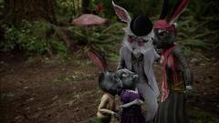 Wx08 Rabbit family