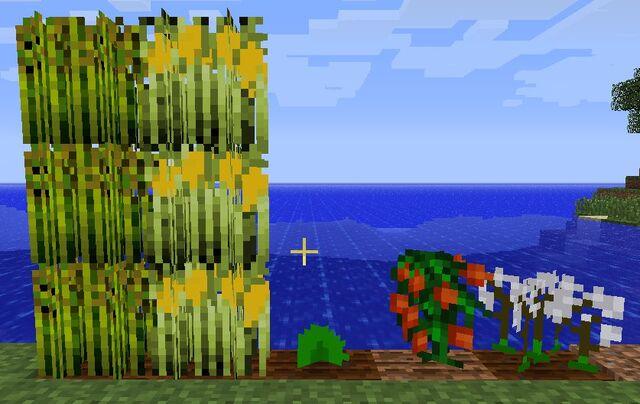 File:Crops.jpg