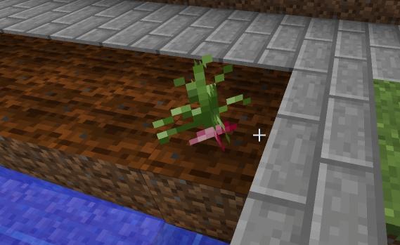 File:2012-05-03 20.24.28 crop.jpg