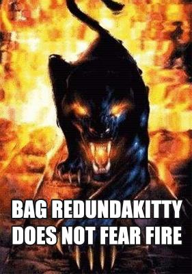 Redundabagfire