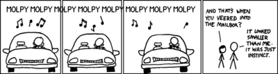 Molpy accident