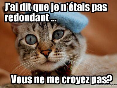 French lolcat40071844ba87836ddc1a978ac3f0bc498738cdf6
