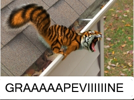 Tigersquirpy