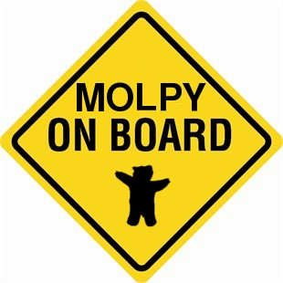 Molpy on board
