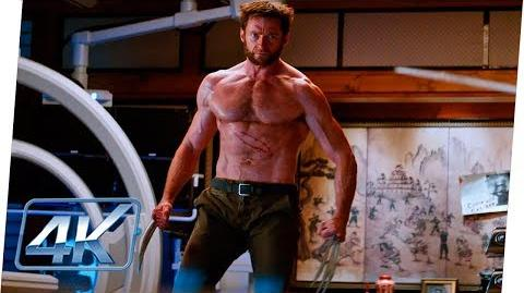 Wolverine Vs Shingen Yashida 'Soy Wolverine' Español Latino - Wolverine Inmortal