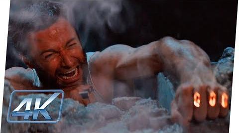 Wolverine Vs Samurai Plateado (1 2) Español Latino Wolverine (Extended)