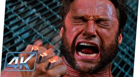 Wolverine Pierde sus Garras de Adamantium Español Latino Wolverine Inmortal (Extended)