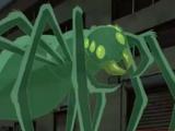 Mystical Arachnid