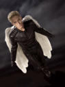 Warren Worthington III / Angel (Archangel)