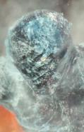 Sentinel ice form