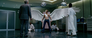 Angel's Wingspan (The Last Stand)