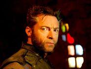Wolverine-DOFP